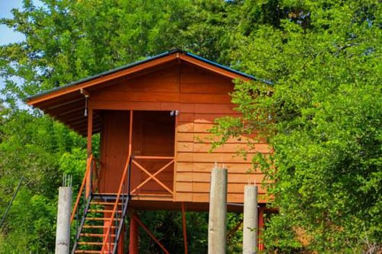 Lovely Place Review Of Royal Point Tree House Sigiriya Sri