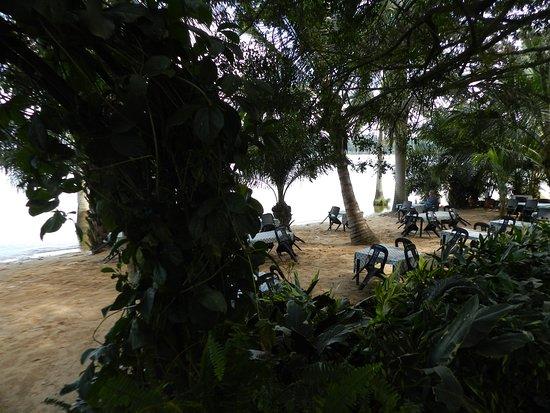 Goretti's Beachside Pizzaria and Grill: Jardín