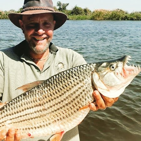 Chirundu, Zambia: Amazing Fishing Experiences and Adventures