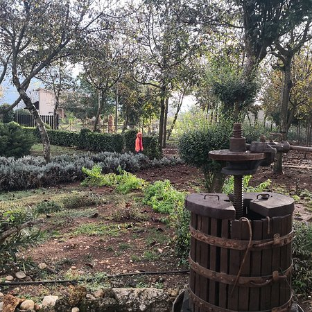 Castrocielo, Itália: Agriturismo Kelle Terre