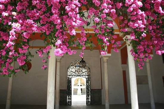 Malaga Private Day Trips