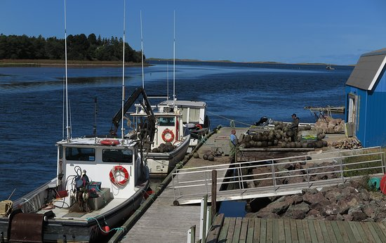 Stanley Bridge, كندا: Fishing boats across the bay from Carr's