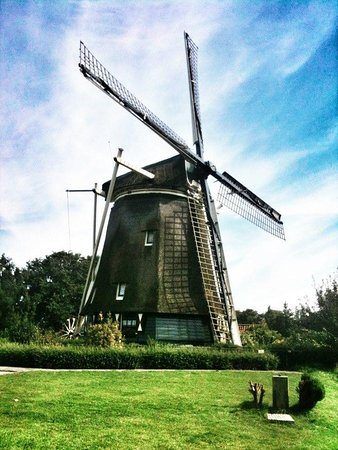 Transfers & Tours in Holland