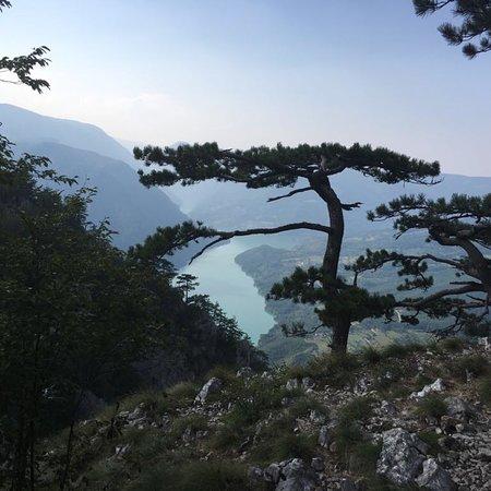 Tara National Park, Σερβία: National Park Tara
