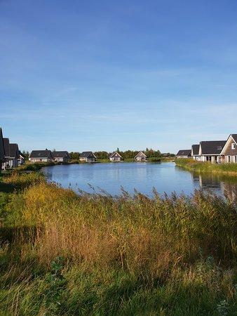 Nieuwvliet, Niederlande: 20180929_Landal_large.jpg