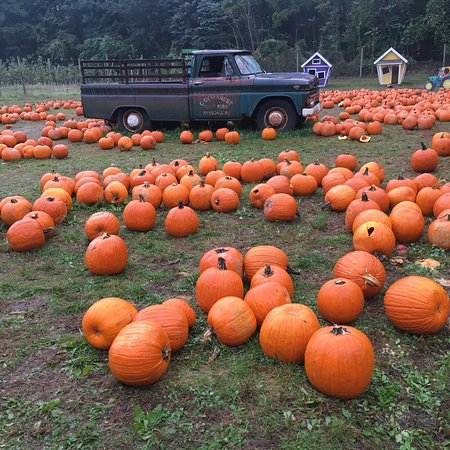 Hillsdale, NJ: Demarest Farm