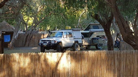 Noordoewer, ناميبيا: Campsites under the trees