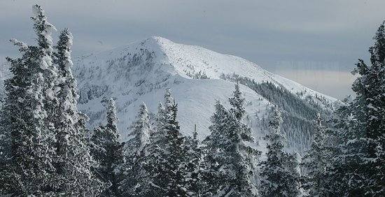 High Country Lodge : Ski Apache-Closest Lodging