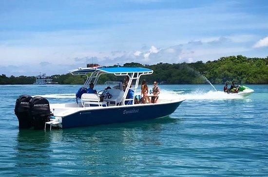 Excursion d'une journée en bateau...