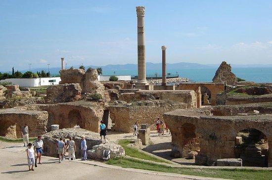 Privat dagstur Tunis Carthage Sidi...