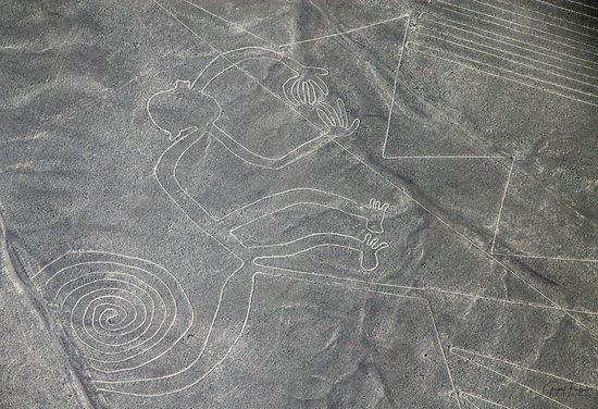 Aeronasca: nazca lines