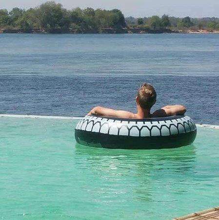 Chirundu, Zambia: Enjoy an amazing view of the Mighty Zambezi from our infinity pool