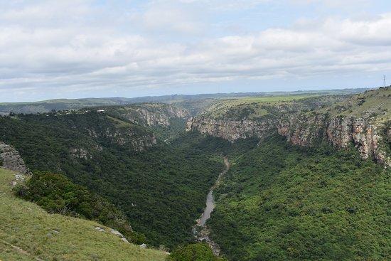 Lake Eland Game Reserve, Republika Południowej Afryki: Le gole Oribi