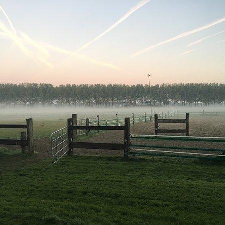Schoondijke, Nederland: Ontbijt, sanitair en uitzicht.