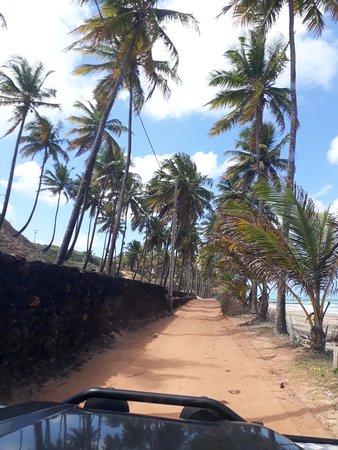 Praia do Coqueirinho: 20181003_130010_large.jpg