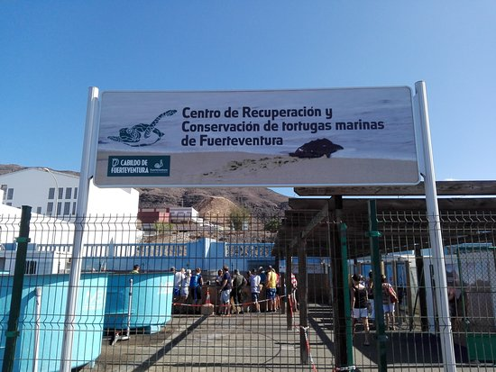 Pajara, Spain: Der Haupteingang am Hafen von Playa de Jandia