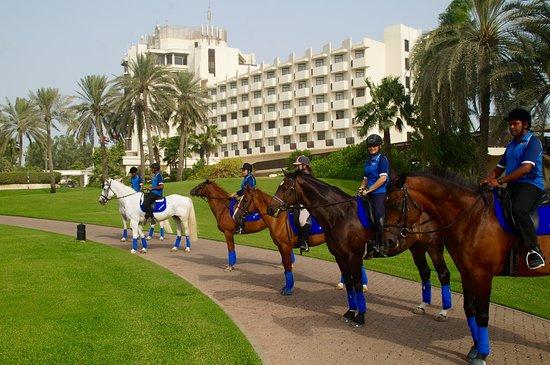 JA Equestrian Centre