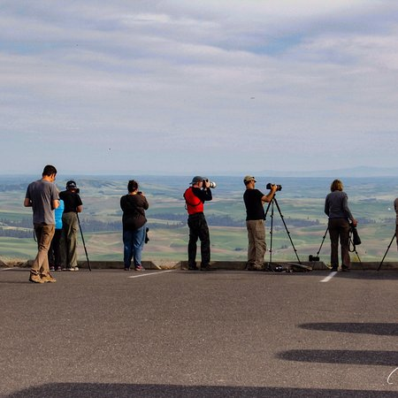 Photographers line up for a sunset shot from Steptoe Butte, WA 6-6-18