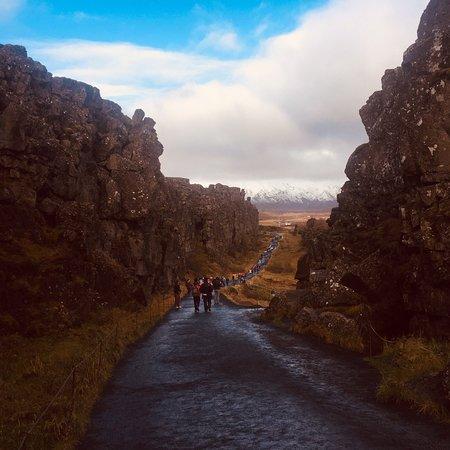 BusTravel Iceland: photo1.jpg