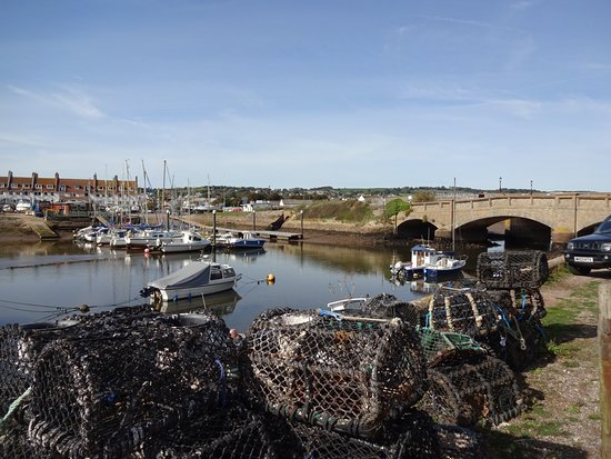 Lovely location. The old Axmouth bridge is now a listened ancient monument