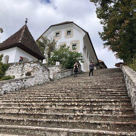 Bled Island: photo1.jpg