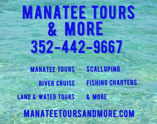 Manatee Tours & More