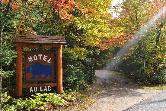 Lac-Saguay, Canadá: Bienvenue au Motel Ours Bleu haut en couleur