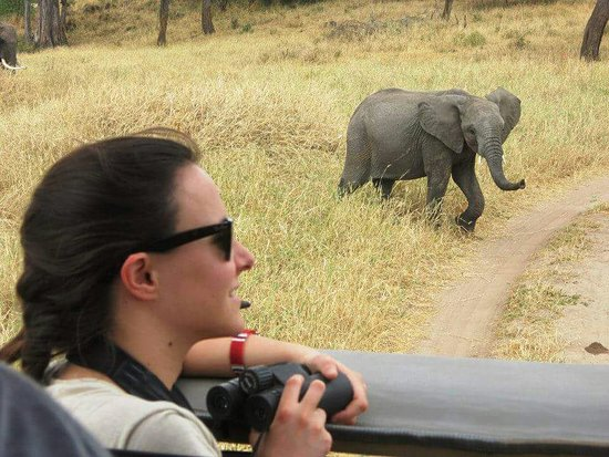 Ijue Africa Safaris: By traveling with IJUE AFRICA SAFARI,you have the chance to feel the nature with its beatiful .