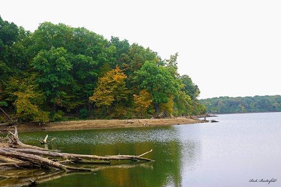 Comlara Park