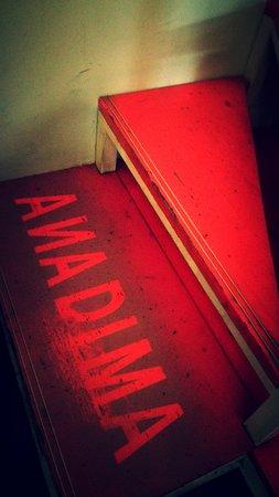 Bilde fra Anadima