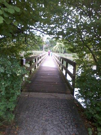 Eschenz, Switzerland: Zugang zur Klosterinsel Werd
