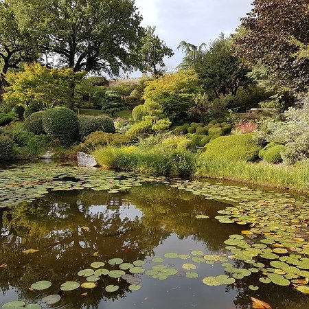 Jardin zen d 39 erik borja beaumont monteux aktuelle 2019 lohnt es sich mit fotos - Beaumont monteux jardin zen ...