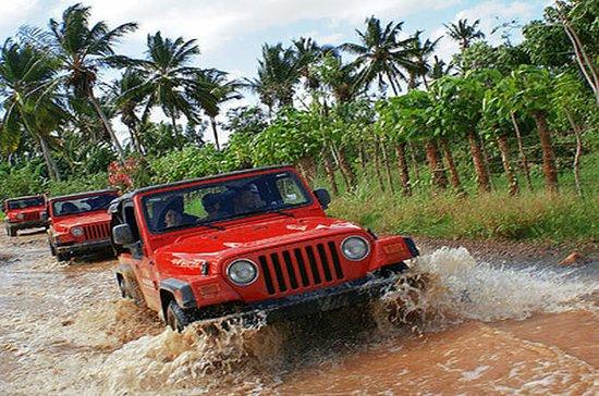 Aventura de safari en jeep por la...