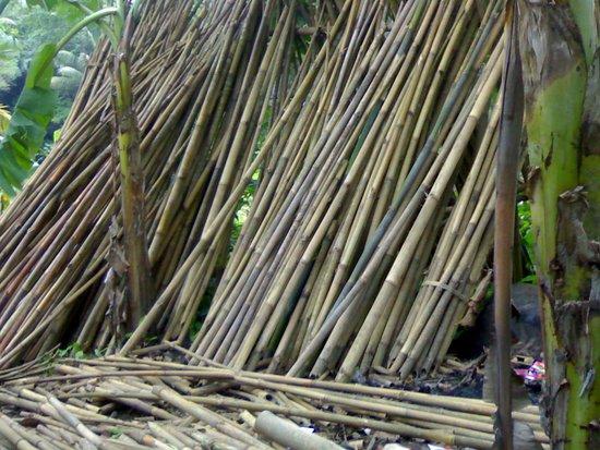 Angklung Nempel Village