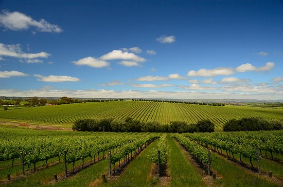 Daylesford Private Winery Tour