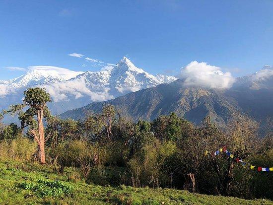 Snow Dragons Nepal Treks