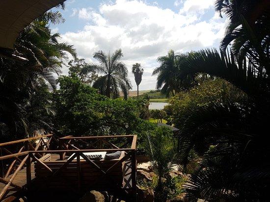 Zinkwazi Beach, Dél-Afrika: 20181008_100133_large.jpg