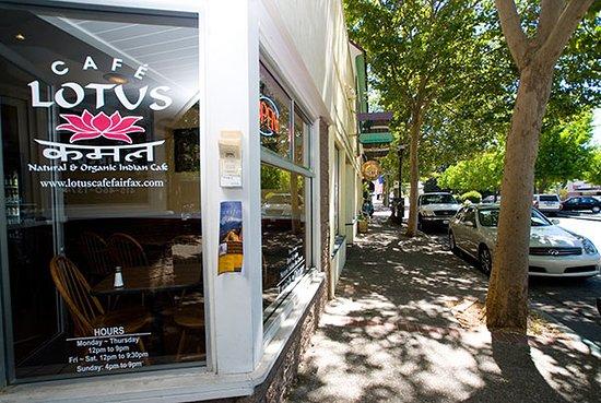 Organic Indian Cafe in Fairfax, CA