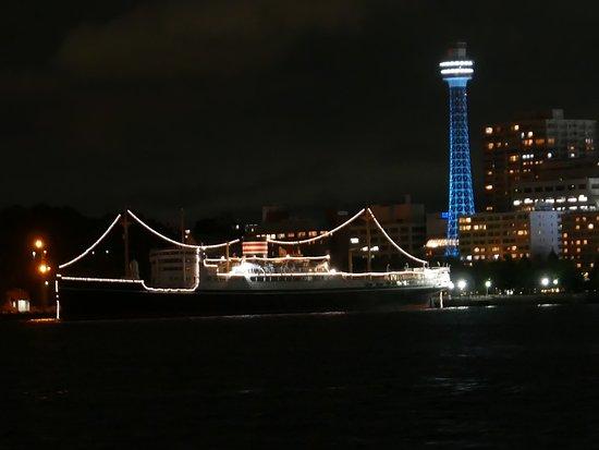 NYK Hikawamaru Exhibits: 船の輪郭がわかります。