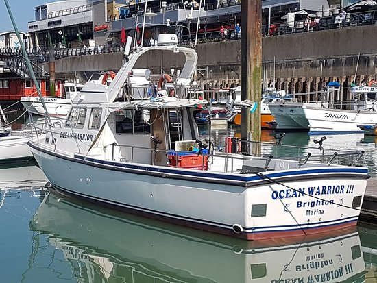 Ocean Warrior 3 (Brighton) - 2019 All You Need to Know
