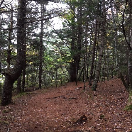 A great day hiking in the fall