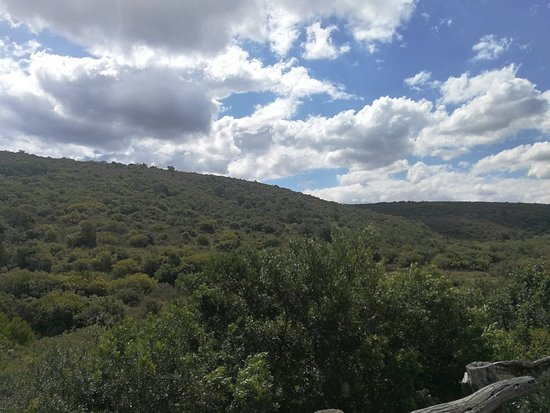 Kraaifontein, South Africa: IMG_20181002_133711_large.jpg