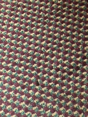 LaFayette, GA: bugs on floor