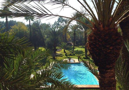 Dar Ayniwen Garden Hotel & Bird Zoo Photo