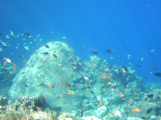 Alor Kecil, Indonesia: Reef at the bay in front of the Church of Biatabang-Abangbul