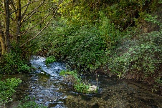 Nerpio, Hiszpania: El cauce del rio.
