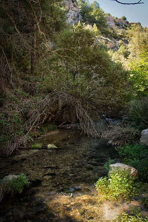 Nerpio, Hiszpania: Las limpias aguas del Rio Taibilla