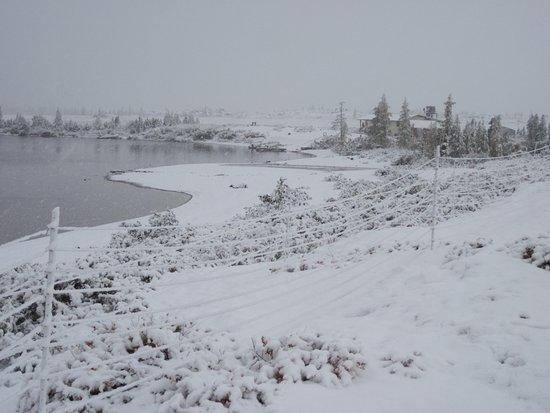 Seal River Heritage Lodge : Unexpected snowfall at Tundra camp