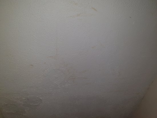 Shillingford, UK: damp patches on the ceiling in the main room