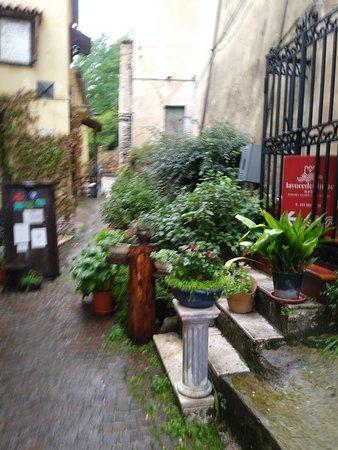 Brienza, อิตาลี: vialetto di ingresso